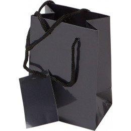 Bolsa de Regalo Papel plastificado 10X15