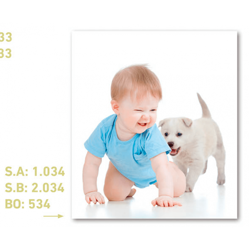 CALENDARIO DE PARED NIÑO Y PERRITO