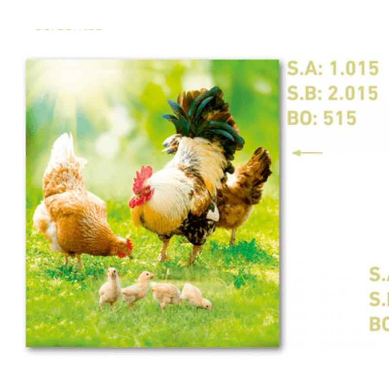 calendario de bolsillo foto gallo