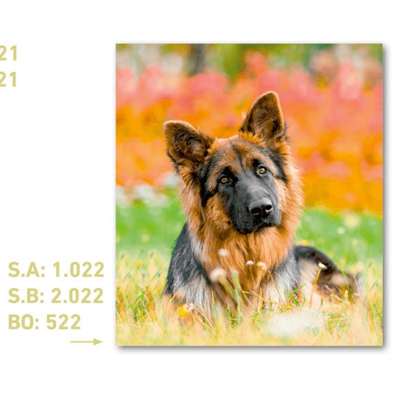 calendario de bolsillo foto perro pastor alemán