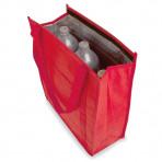 Bolsa nevera  termo reutilizable