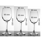 Copa cata vinos personalizada