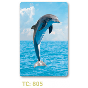 calendario tarjeta delfín
