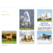 calendario publicidad de pared 5 hojas paisajes caballos