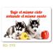 calendario de bolsillo cachorros husky